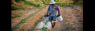 Sustainable agriculture can mitigate climate change and involuntary migration: FAO